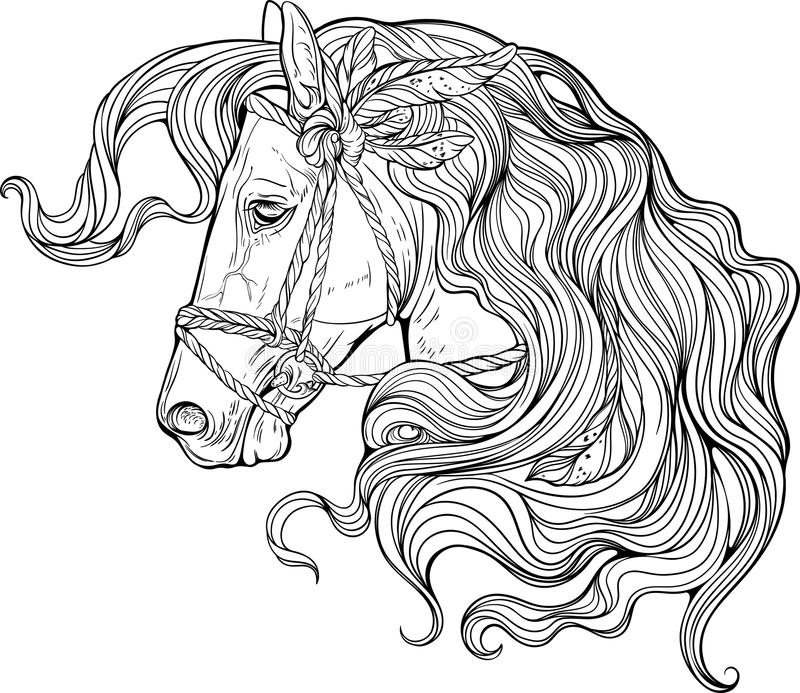 Portrait of a horse with long decorated mane. vector illustration