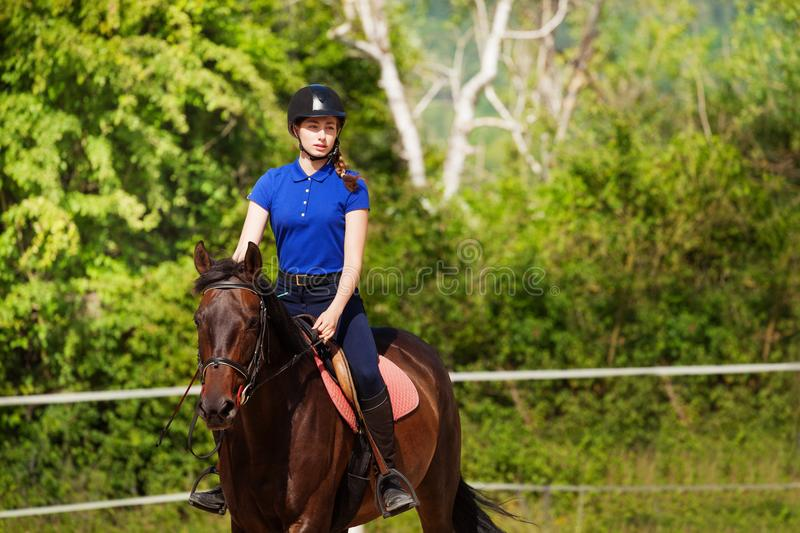 Portrait of horsewoman with show jumping horse royalty free stock photo