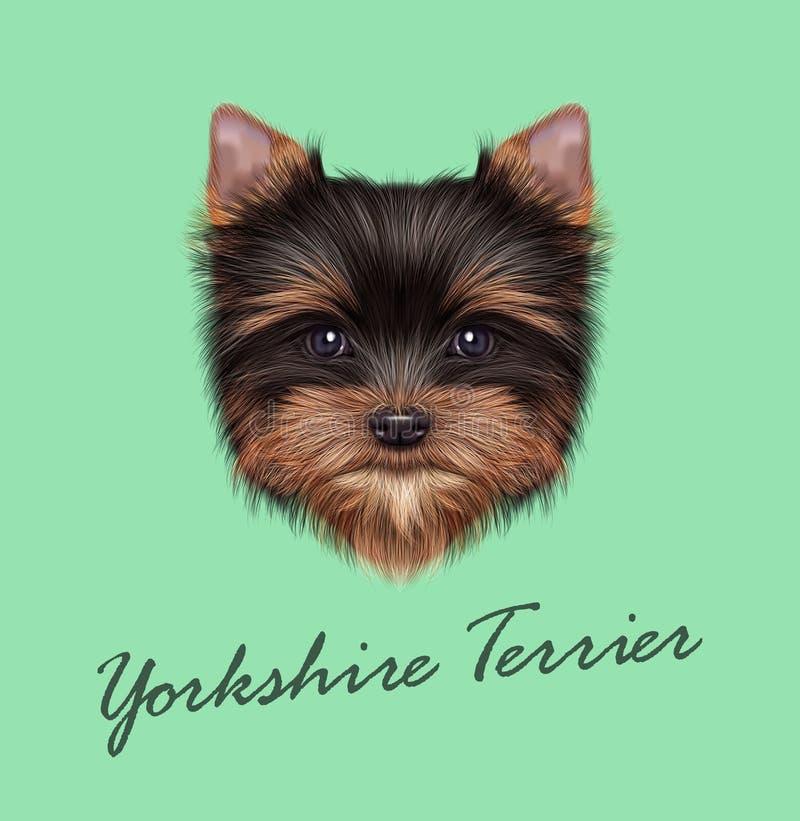 Portrait illustré par vecteur de chiot de Yorkshire Terrier illustration libre de droits
