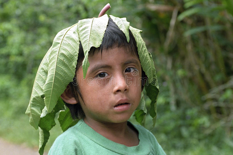 Portrait Indian boy with tree leaf on his head. Guatemala, department Alto Verapaz, village San Pablo Purulha: Closeup of Pokomchi Maya Indian child, who has put stock images