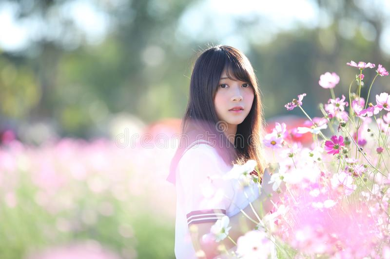 Portrait of Japanese school girl uniform with cosmos flower stock images