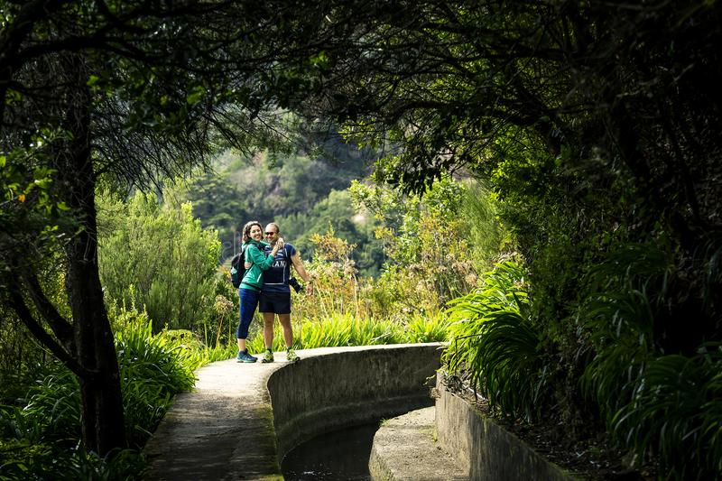 Portrait of just married couple walking by levada on Madeira island. Portrait of just married couple walking by levada on Madeira island, up in mountains royalty free stock image