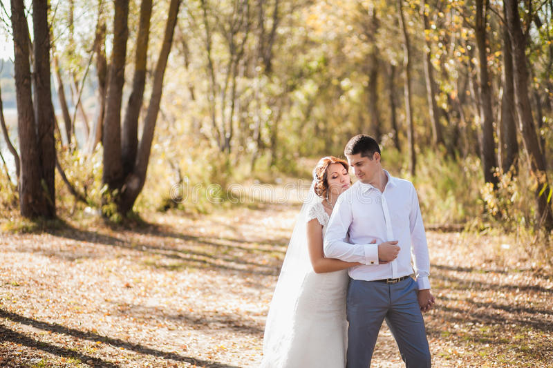 Portrait of just married wedding couple. happy bride, groom standing on beach, kissing, smiling, laughing, having fun in autumn pa royalty free stock images