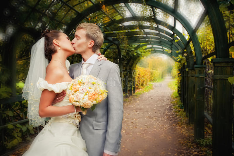 Portrait of kissing newlyweds royalty free stock photography