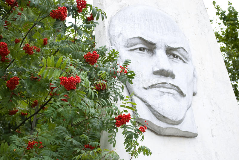 Portrait of Lenin. In the background of mountain ash berries. Russian province royalty free stock image