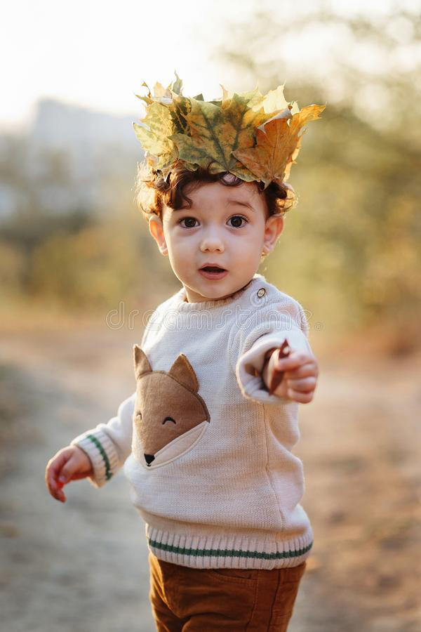 Portrait liitle boy with crown of leaves in autumn park. Cute curly toddler royalty free stock photo