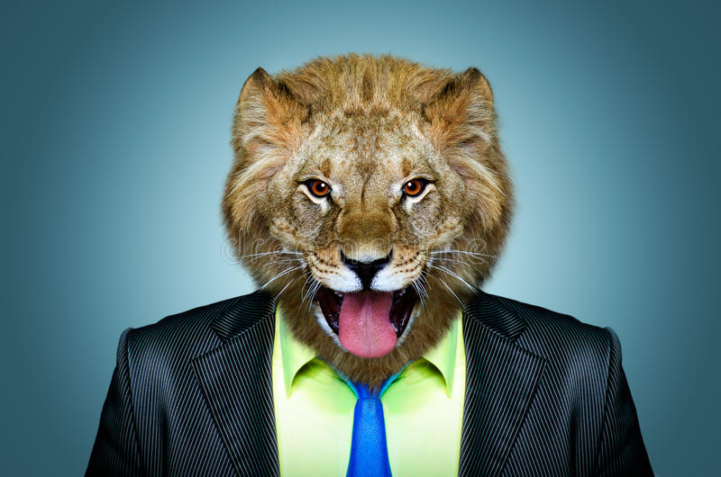 Portrait of a lion in a business suit stock photo