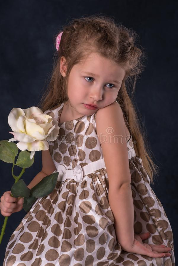 The girl`s portrait with a flower. The portrait of littel girl with a flower stock image