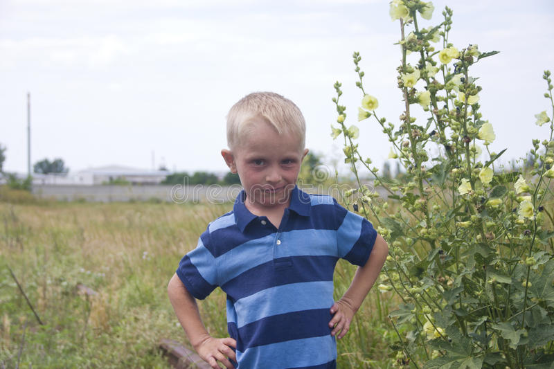 Portrait Of Little Blond Boy Near Big Flowers Royalty Free Stock Photography