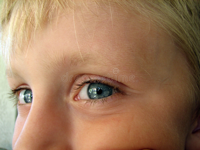 Download Portrait of a Little Boy stock photo. Image of closeup - 526132