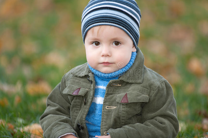 Portrait of a little boy in the autumn park stock photography