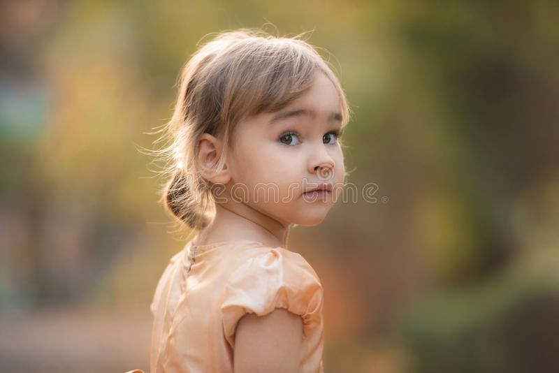 Portrait of Little Child Girl in Autumn in Nature stock photo