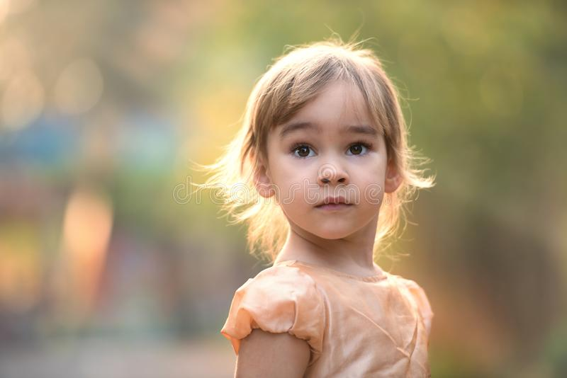 Portrait of Little Child Girl in Autumn in Nature stock images