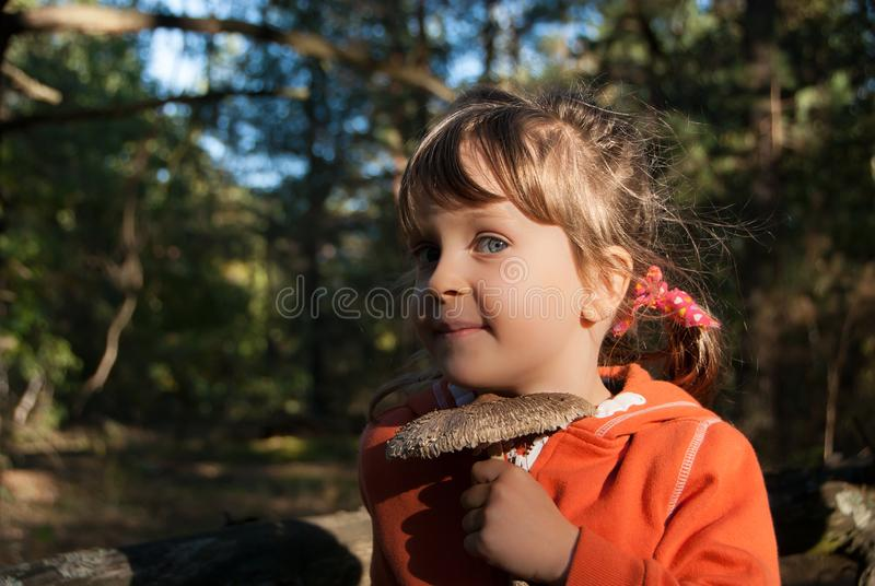 Portrait of a little five-years-old girl holding a parasol mushroom. stock photos