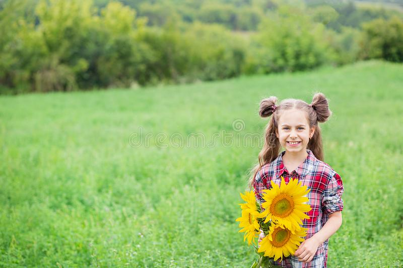 Portrait of little girl with big great gorgeous sunflower bouquet in her hands on the field background. Portrait of a little girl in a checkered shirt with a big royalty free stock photography