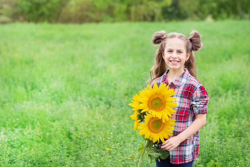 Portrait of little girl with big great gorgeous sunflower bouquet in her hands on the field background. Portrait of a little girl in a checkered shirt with a big stock images