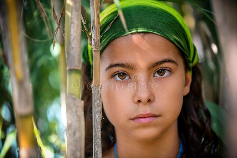 Portrait of a little girl in the bushes.  stock photo