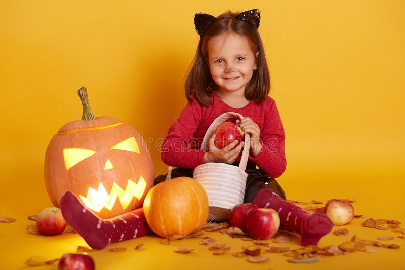Portrait of little girl in costume of cat, kid sitting on floor with trick or treat basket, surrounded with apples and Jack o royalty free stock photography