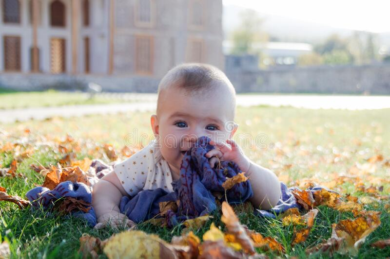 Portrait of little girl on a grass in a park playing with dry yellow leaves on a sunset.  stock photos