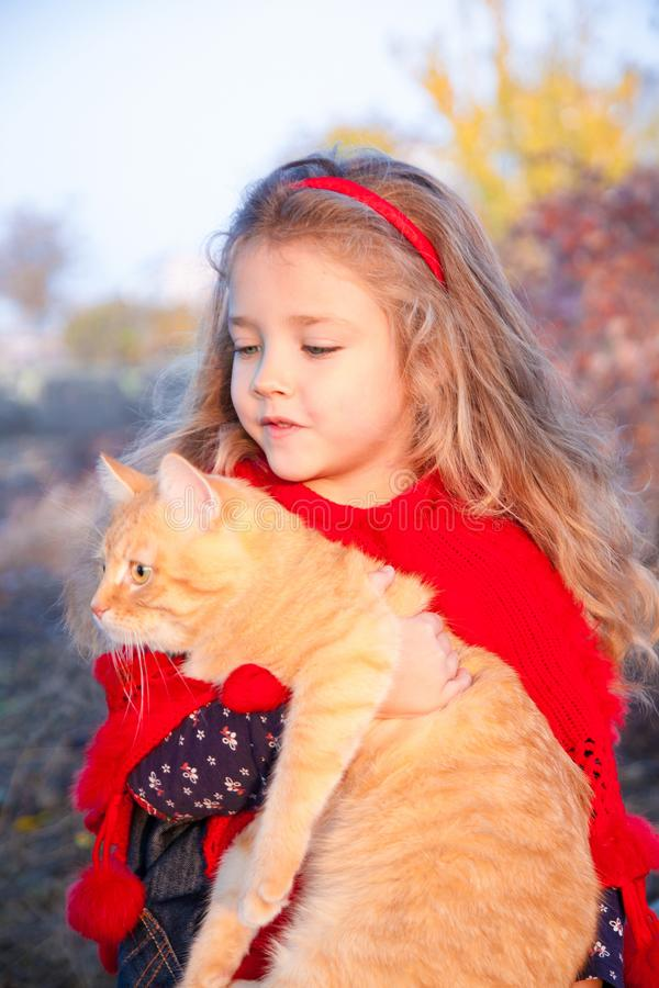 Portrait of a little girl with a red cat in her hands in autumn. Outdoors royalty free stock photography