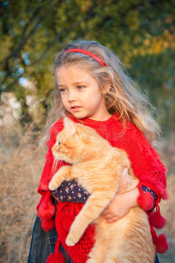 Portrait of a little girl with a red cat in her hands in autumn. Outdoors stock photos