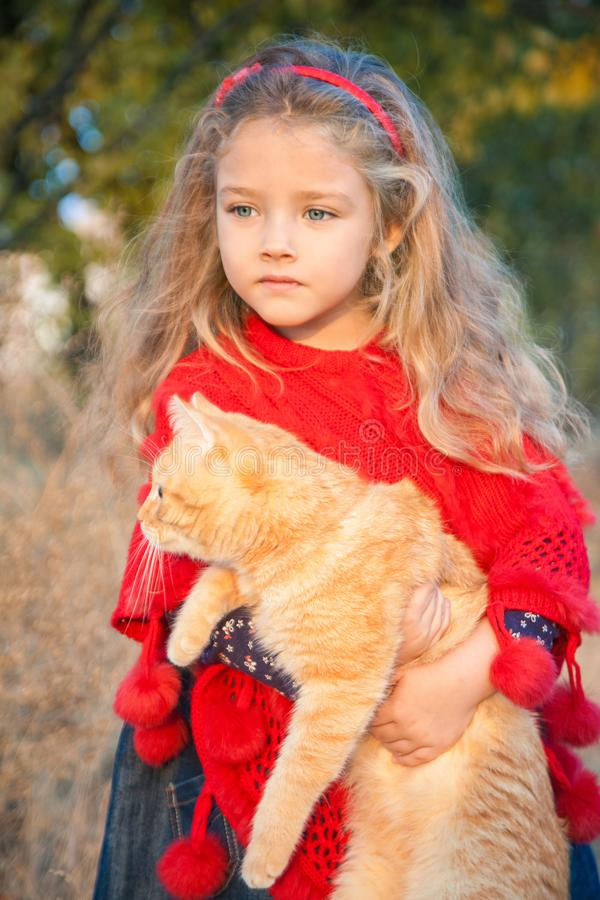 Portrait of a little girl with a red cat in her hands in autumn. Outdoors stock photography