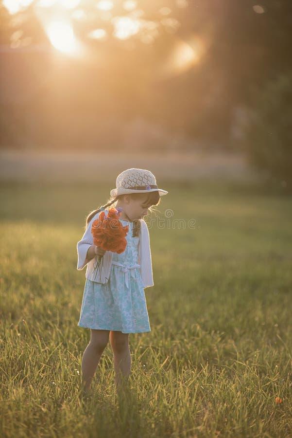 Portrait of little girl in the redd poppy field stock images