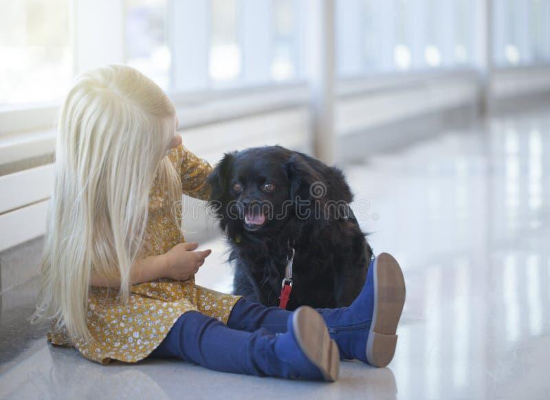 Portrait of little girl sitting on floor and stroking black dog stock image