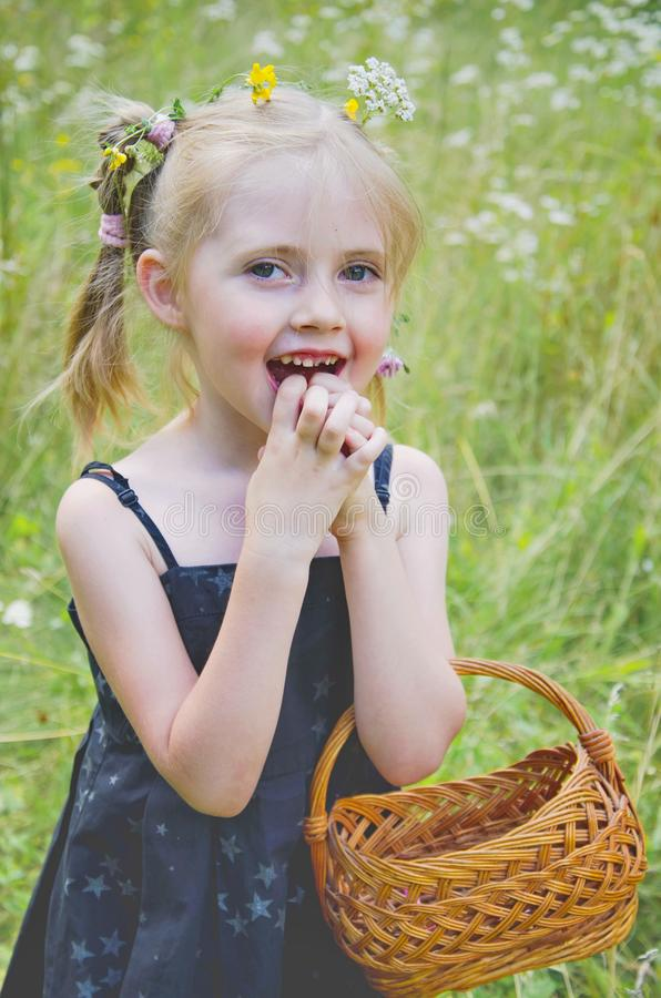 Portrait of a little girl in a summer meadow. With decorations of field flowers royalty free stock photos