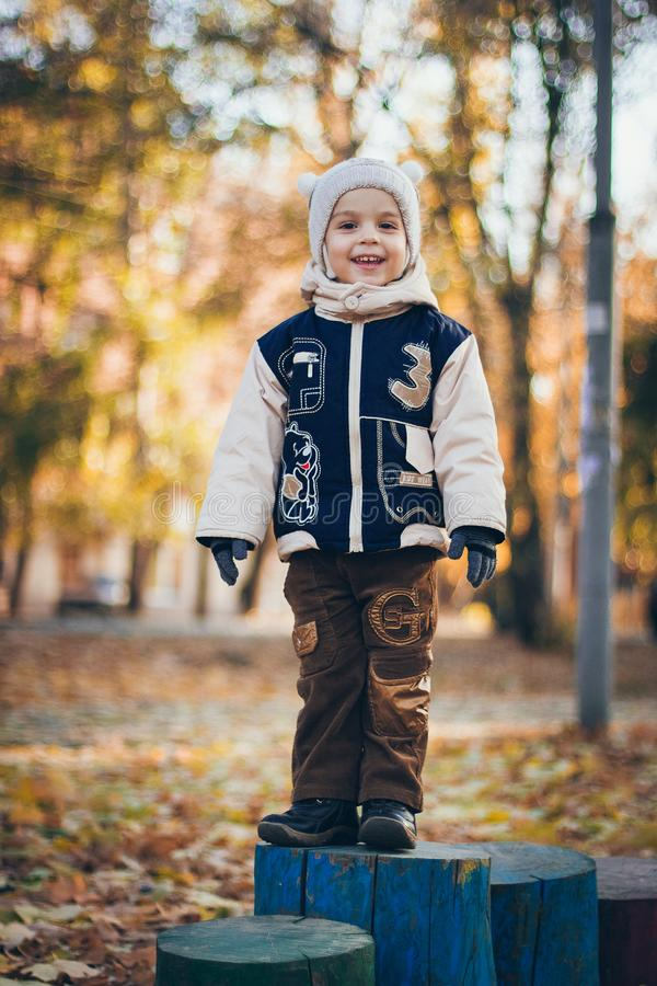 A portrait of a little handsome smiling boy in the autumn forest or park in yellow leaves royalty free stock photography