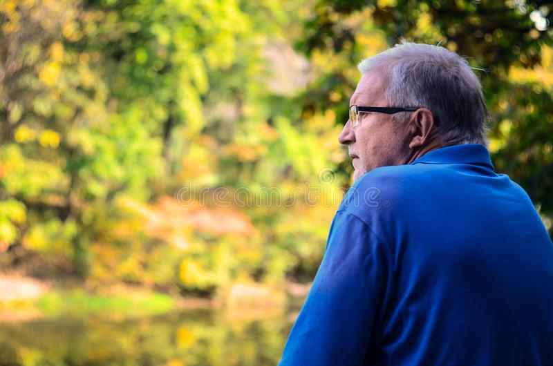 Portrait of a lonely mature man against the autumn forest background royalty free stock photos