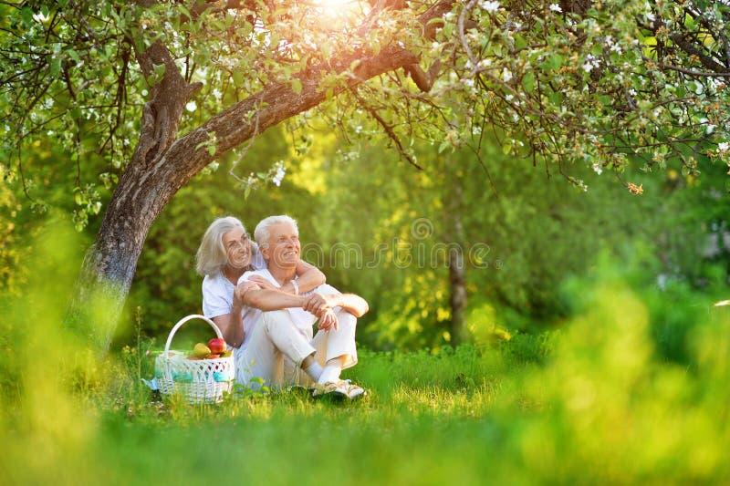 Portrait of loving elderly couple having a picnic royalty free stock photography