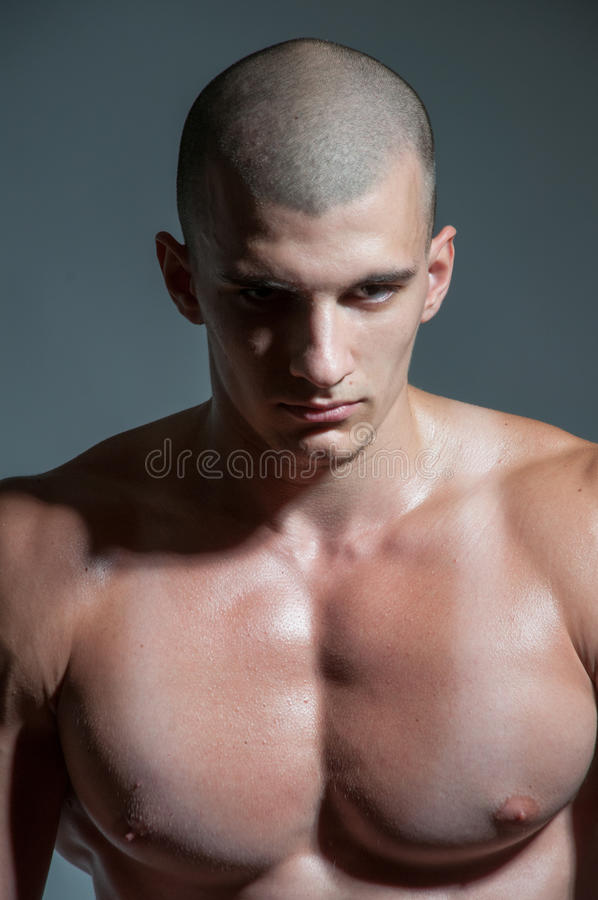 Portrait of male model royalty free stock images