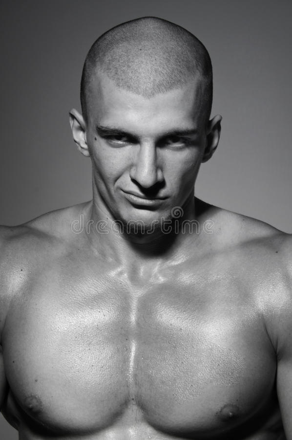 Portrait of male model royalty free stock photo