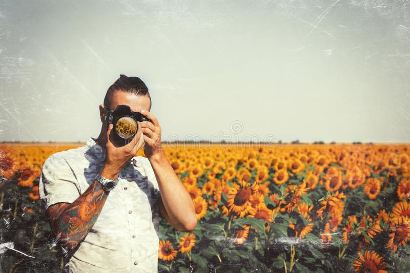 Portrait Of Male Photographer Making Photo With Camera In Hands Outdoors On Sunflowers Field With Toned Filter. Man Photographer In Sunflower Meadow flower royalty free stock images