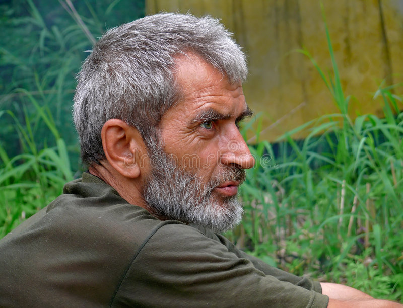 Download Portrait Of Man With Beard 15 Stock Image - Image: 3353375