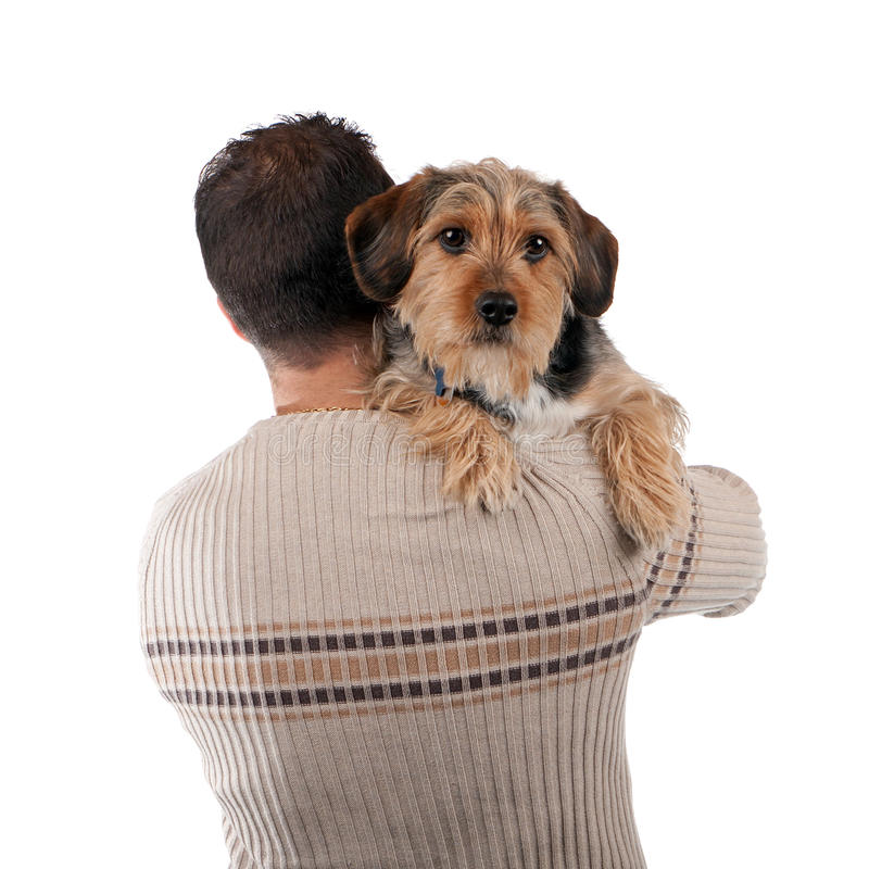 Man Holding a Borkie Dog royalty free stock images