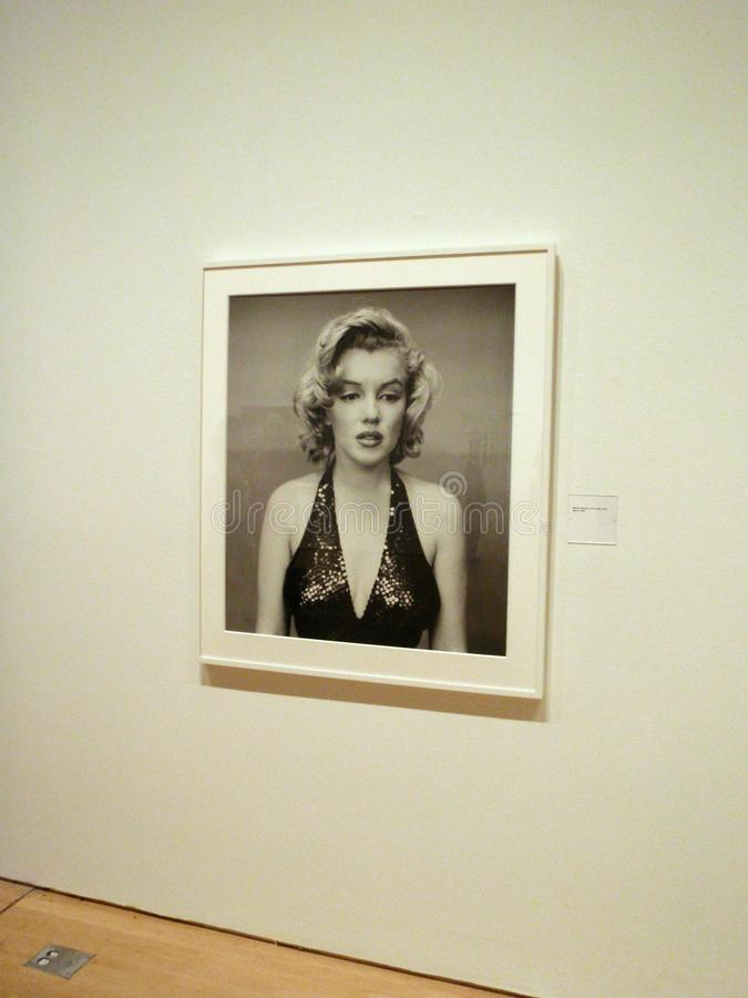 Portrait of Marilyn Monroe photographed by Richard Avedon on display at the SFMOMA. San Francisco -  September 11, 2009: Portrait of Marilyn Monroe photographed royalty free stock image