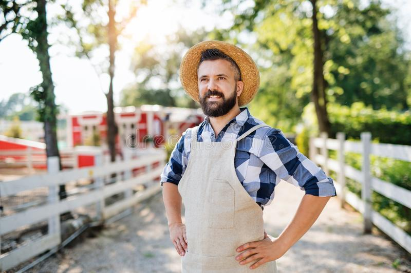 A portrait of mature man farmer standing outdoors on family farm. stock image