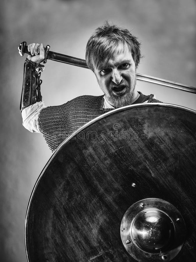 Portrait medieval foto de archivo libre de regalías