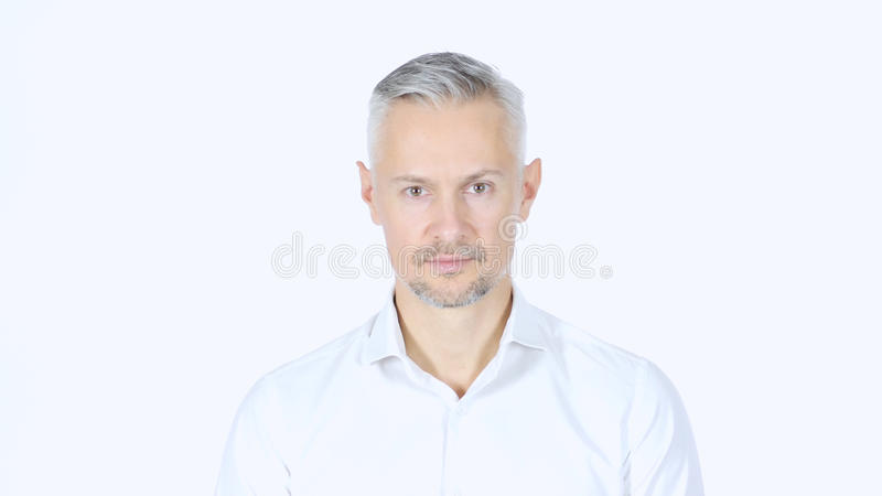 Portrait Of Middle Aged Businessman Looking Into Camera , Grey Haired royalty free stock photography