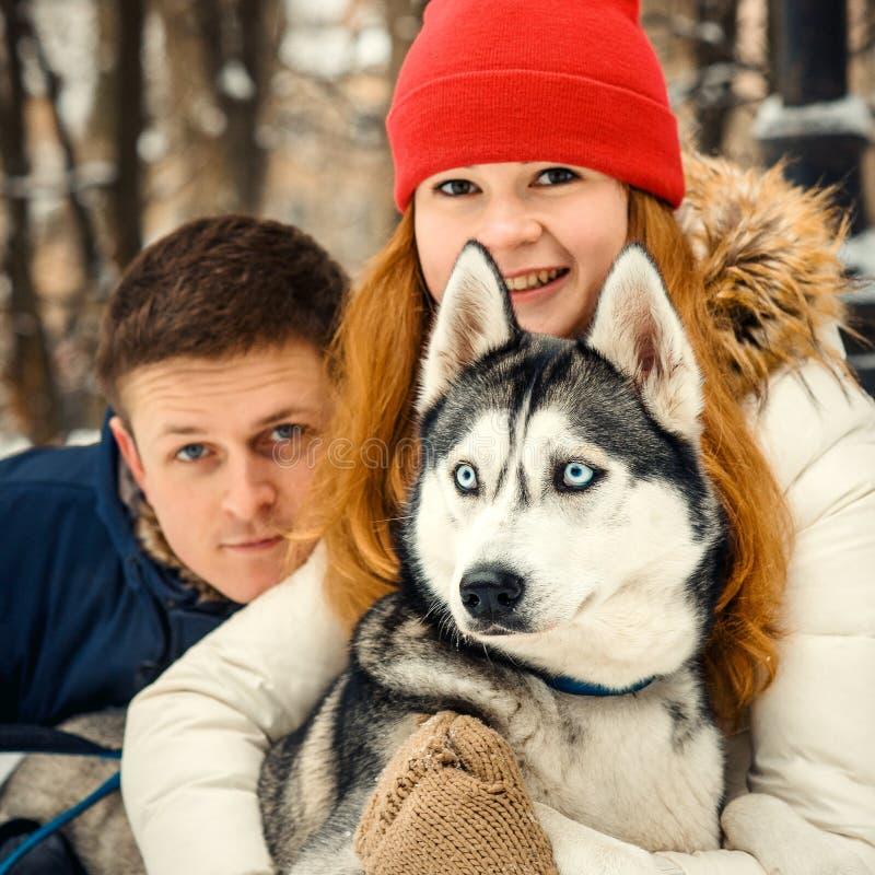 Portrait mignon de beaux couples gais étreignant le chien de traîneau sibérien en parc neigeux Horaire d'hiver photo stock