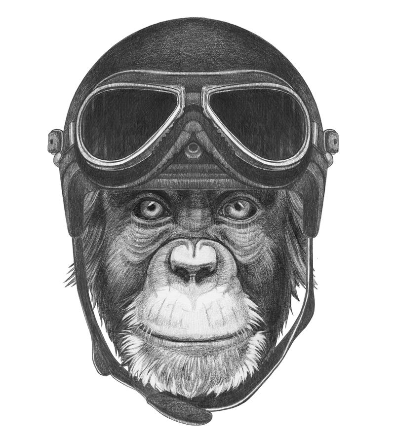 Portrait of Monkey with Vintage Helmet. stock illustration