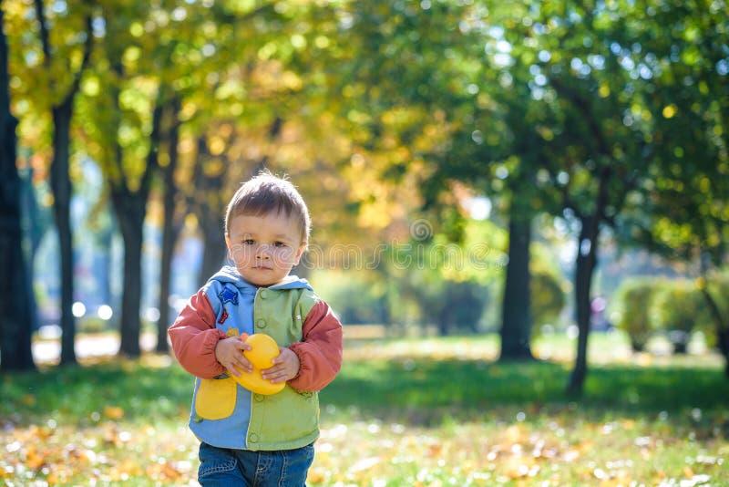 Portrait ?motif de rire heureux et gai de petit gar?on feuilles volantes jaunes d'?rable tout en marchant en parc d'automne heure photo stock