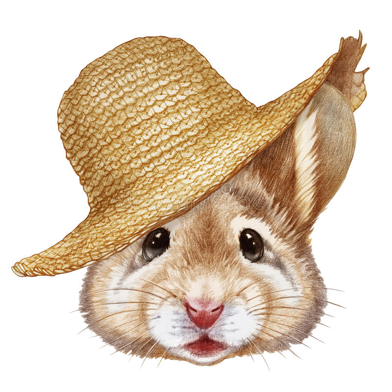 Portrait of Mouse with straw hat. Hand-drawn illustration, digitally colored vector illustration