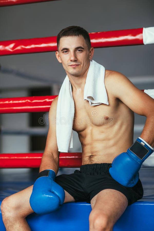 Portrait of muscular handsome boxer on ring background stock photos