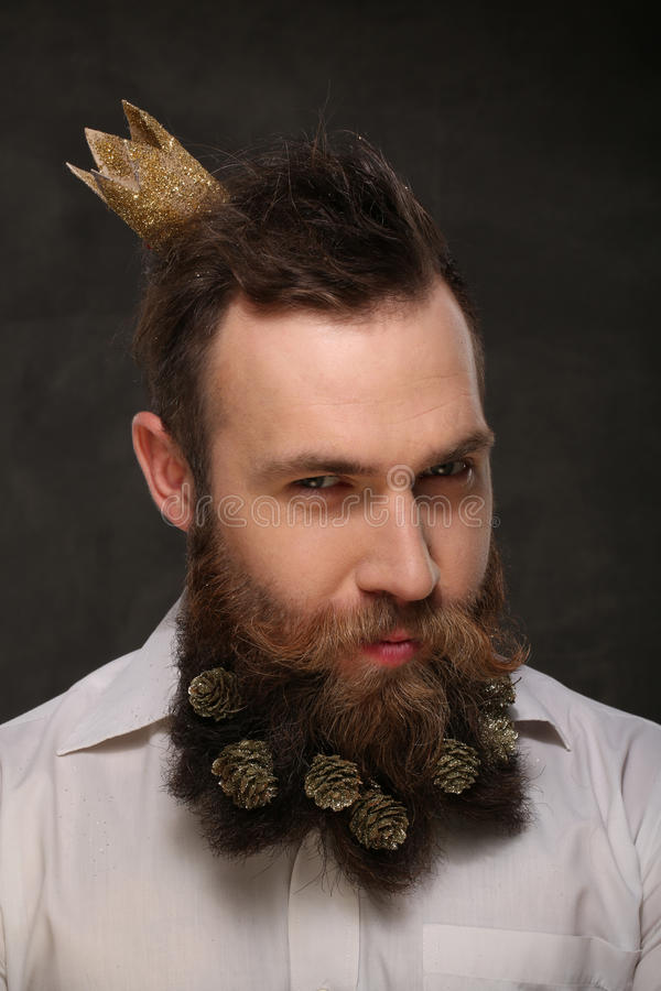 Portrait of new year man, long beard with Christmas cones royalty free stock photos