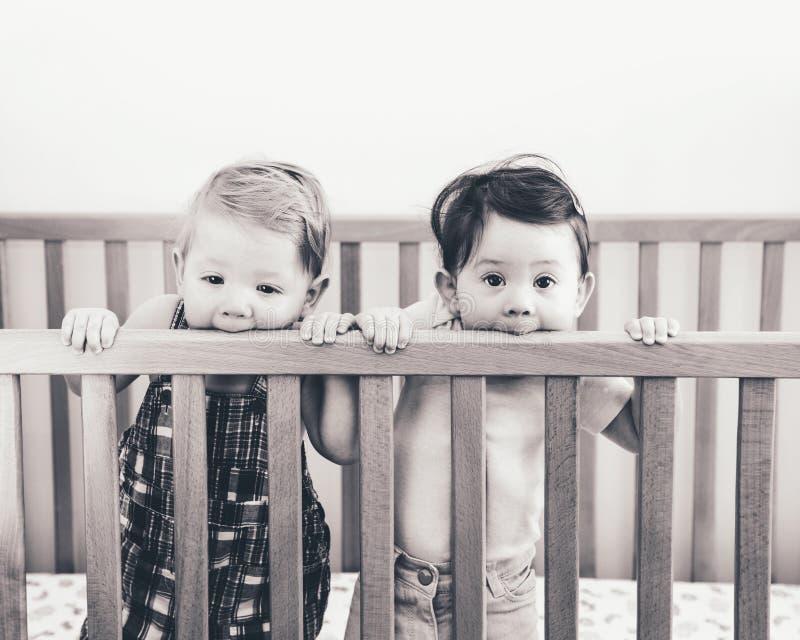 Portrait noir et blanc de deux amis drôles adorables mignons d'enfants de mêmes parents de bébés de neuf mois se tenant dans la h photo libre de droits