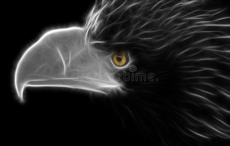 Portrait noir et blanc de fractale d'un grand aigle sauvage illustration libre de droits