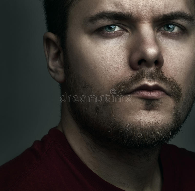 Portrait royalty free stock image